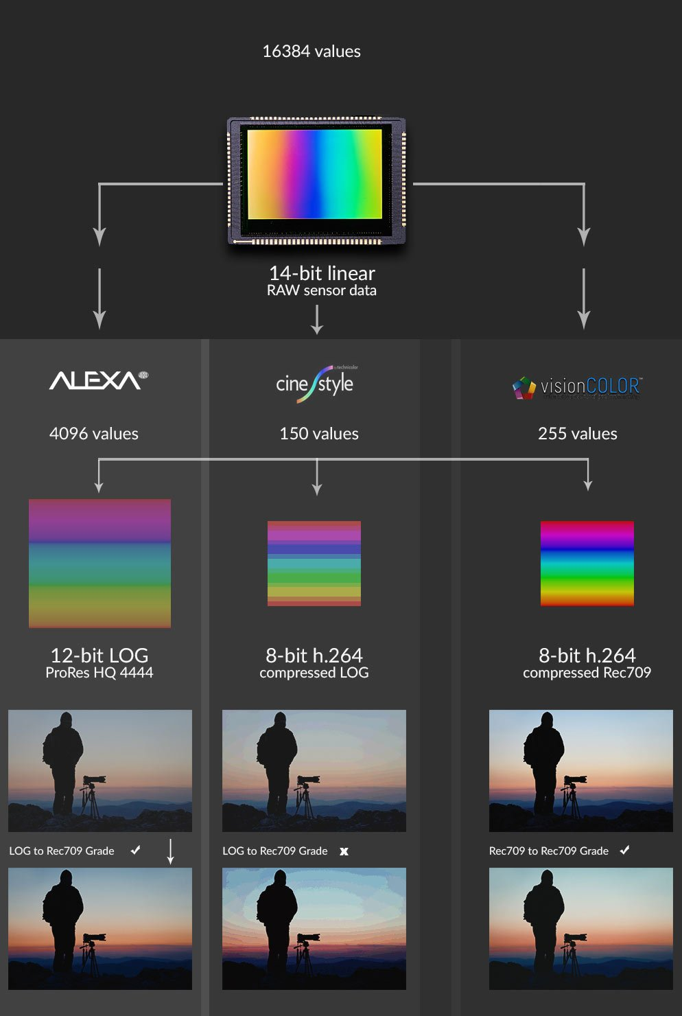 Picture Styles Canon EOS