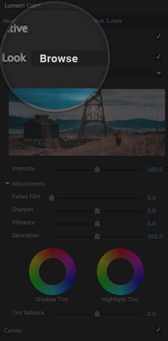 Load LUTs in Lumetri - Adobe Premiere